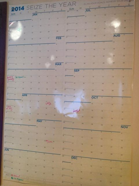 I love this dry-erase wall calendar from NeuYear.net. So pretty and perfect.