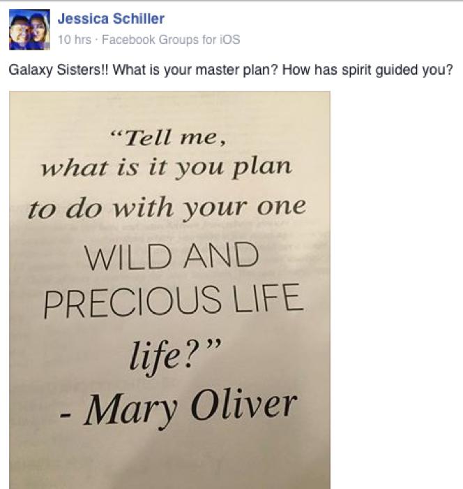 Jessica Schiller FB quote